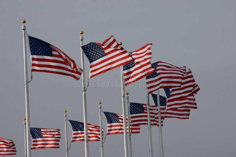 Флаги США стоковые изображения