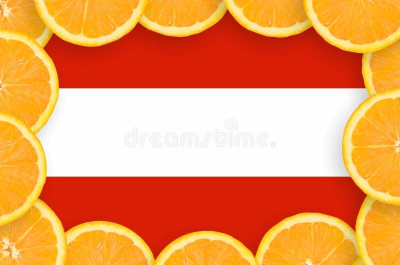 Флаг Австрии в свежей рамке кусков цитрусовых фруктов иллюстрация штока