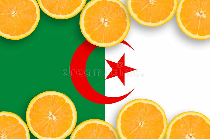 Флаг Алжира в рамке кусков цитрусовых фруктов горизонтальной иллюстрация штока