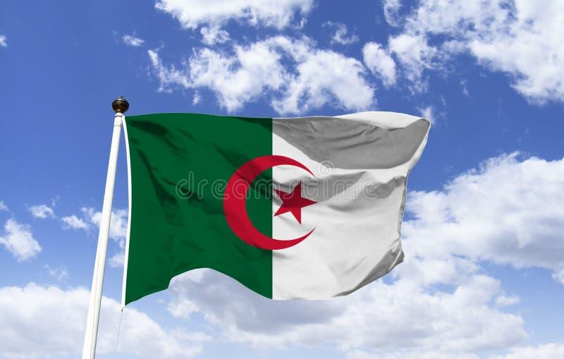 Флаг Алжира, порхая под голубым небом стоковое изображение