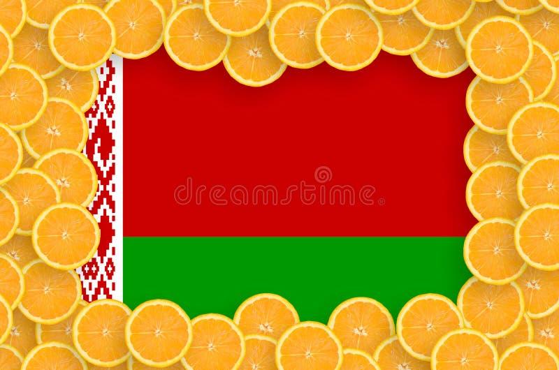 Флаг Беларуси в свежей рамке кусков цитрусовых фруктов иллюстрация вектора