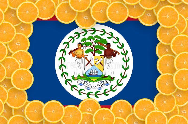 Флаг Белиза в свежей рамке кусков цитрусовых фруктов иллюстрация вектора