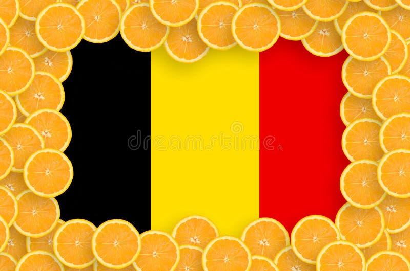 Флаг Бельгии в свежей рамке кусков цитрусовых фруктов бесплатная иллюстрация