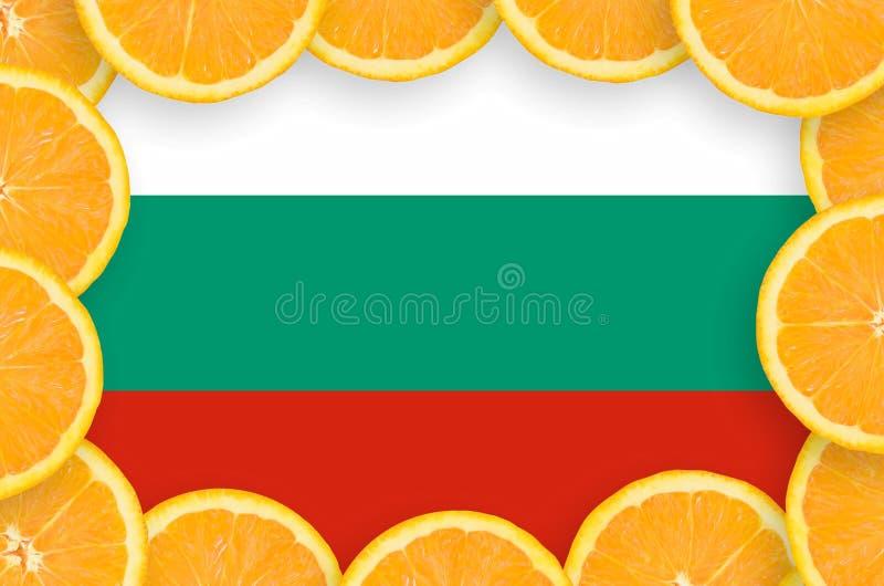 Флаг Болгарии в свежей рамке кусков цитрусовых фруктов иллюстрация вектора