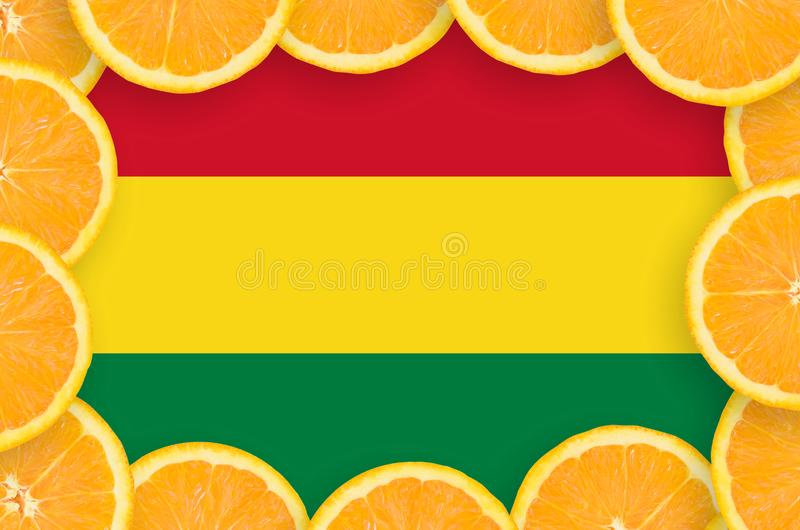 Флаг Боливии в свежей рамке кусков цитрусовых фруктов бесплатная иллюстрация