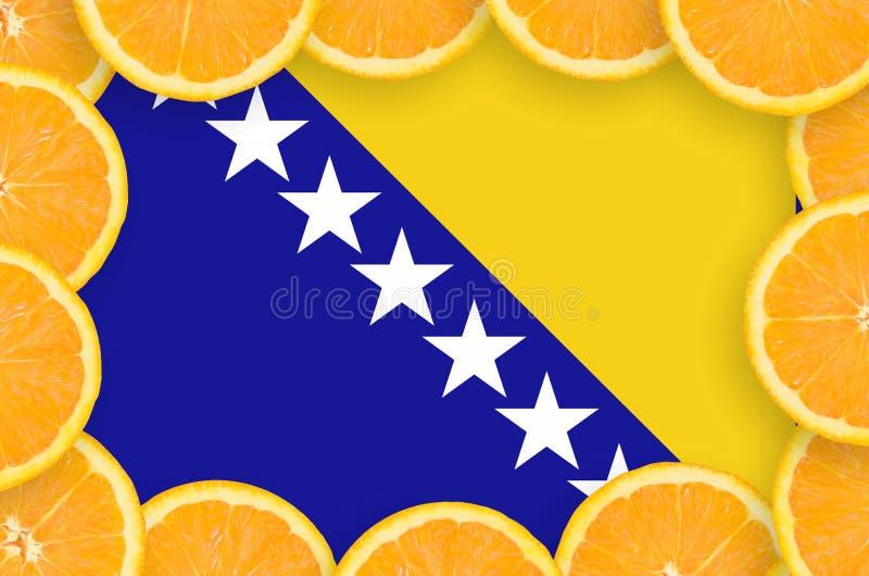 Флаг Боснии и Герцеговины в свежей рамке кусков цитрусовых фруктов иллюстрация штока