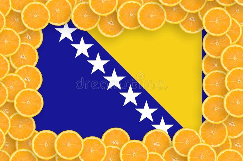 Флаг Боснии и Герцеговины в свежей рамке кусков цитрусовых фруктов иллюстрация вектора