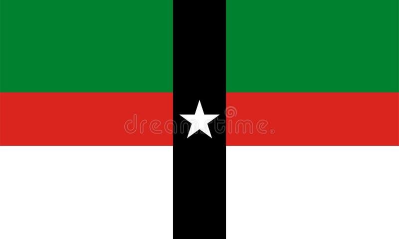 Флаг вектора города Denison Техас, США иллюстрация штока
