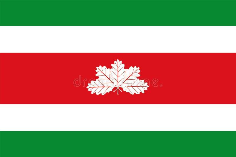 Флаг вектора Boyaca, Колумбия иллюстрация вектора