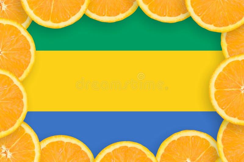 Флаг Габона в свежей рамке кусков цитрусовых фруктов иллюстрация вектора