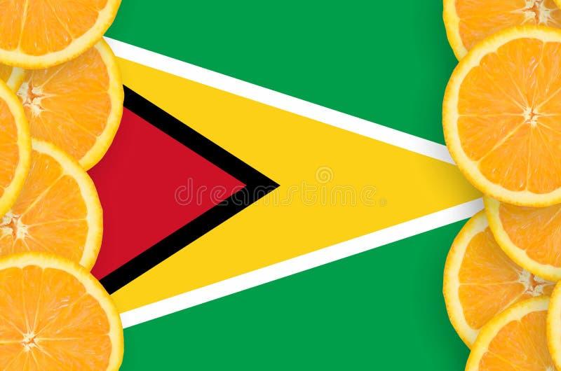 Флаг Гайаны в рамке кусков цитрусовых фруктов вертикальной иллюстрация штока