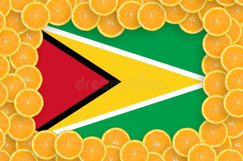 Флаг Гайаны в свежей рамке кусков цитрусовых фруктов бесплатная иллюстрация