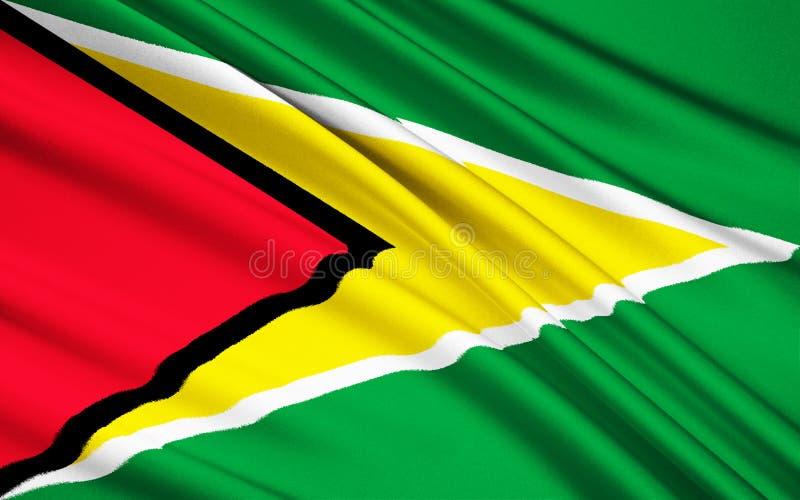 Флаг Гайаны, Джорджтауна стоковая фотография rf