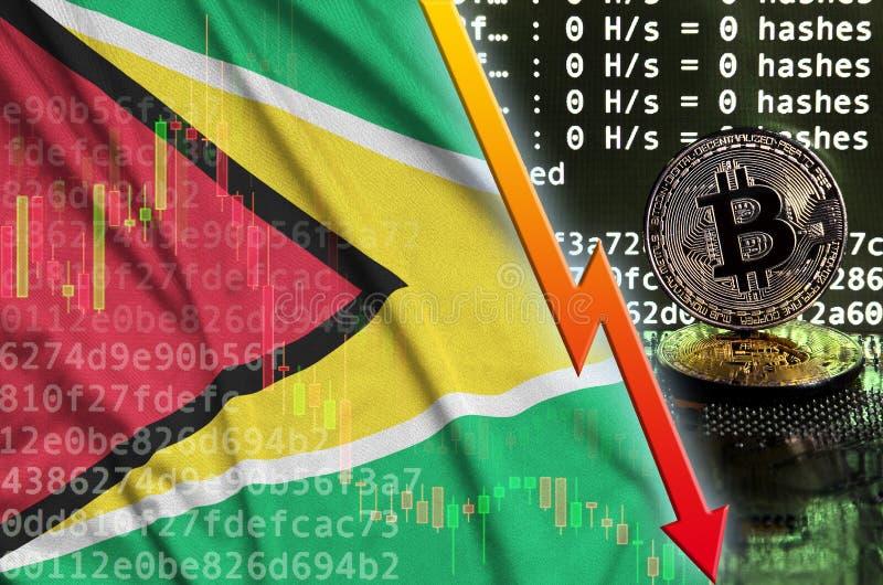Флаг Гайаны и падая красная стрелка на экране bitcoin минируя и 2 физических золотых bitcoins иллюстрация штока