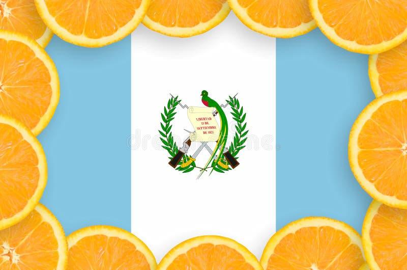 Флаг Гватемалы в свежей рамке кусков цитрусовых фруктов иллюстрация вектора