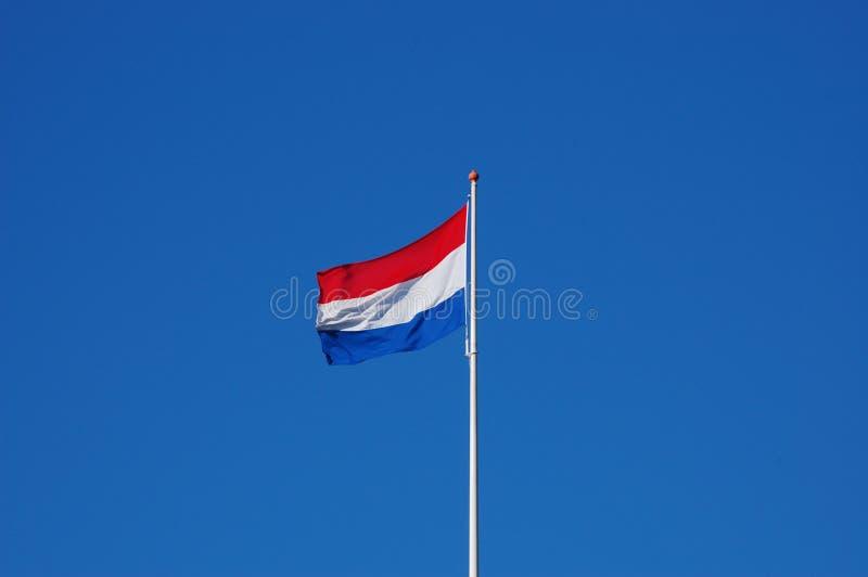 флаг Голландия стоковое изображение rf