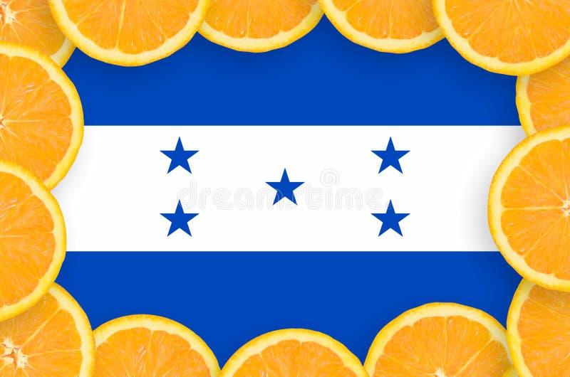 Флаг Гондураса в свежей рамке кусков цитрусовых фруктов бесплатная иллюстрация