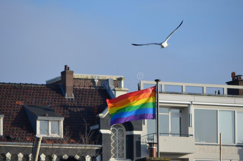 Флаг Гордости В Амстердаме стоковое фото rf