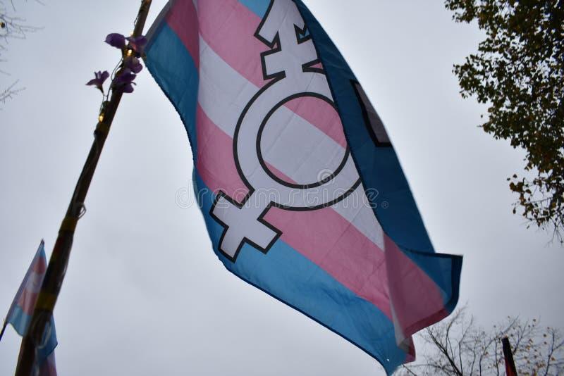 Флаг гордости Trans* на демонстрации в Берлине стоковые фотографии rf