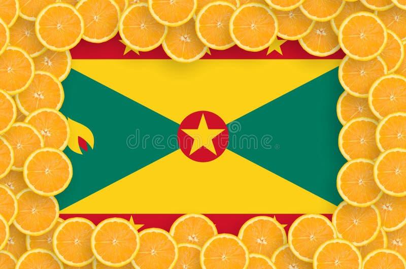 Флаг Гренады в свежей рамке кусков цитрусовых фруктов иллюстрация вектора