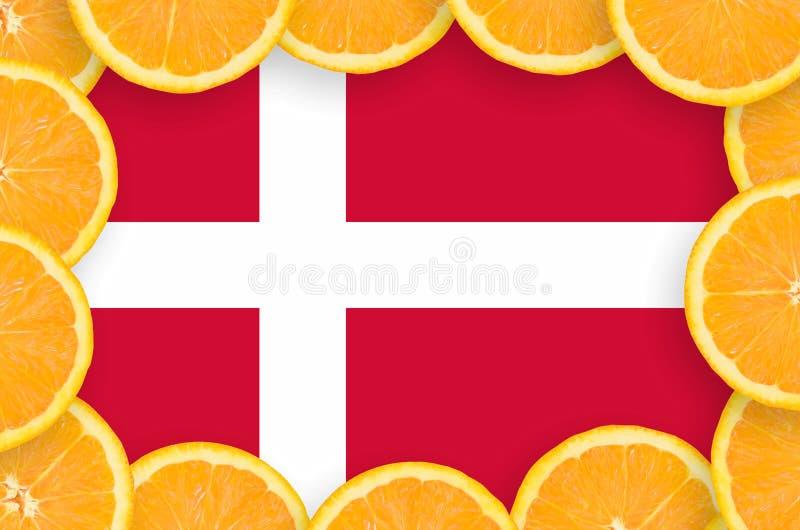 Флаг Дании в свежей рамке кусков цитрусовых фруктов иллюстрация штока