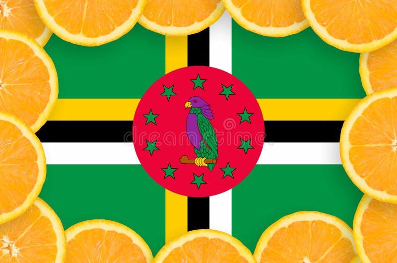 Флаг Доминики в свежей рамке кусков цитрусовых фруктов иллюстрация вектора