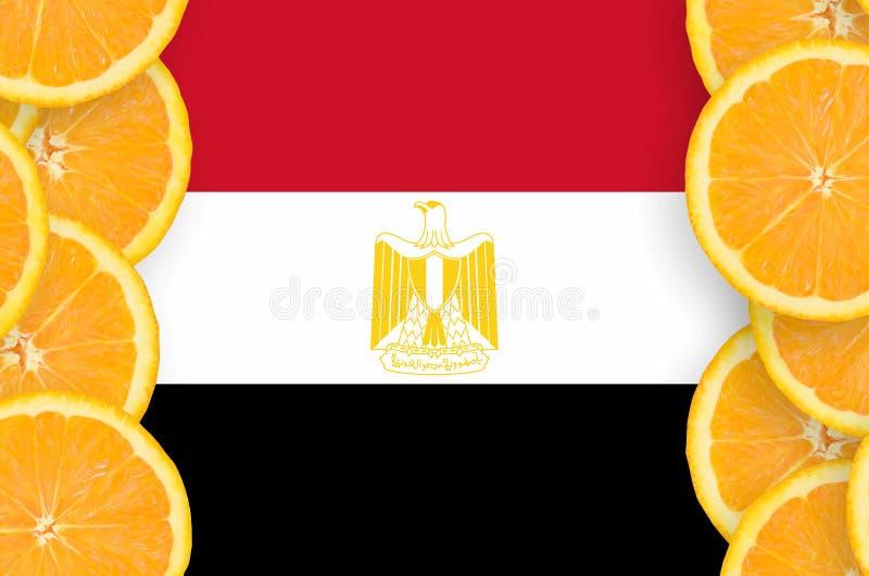 Флаг Египта в рамке кусков цитрусовых фруктов вертикальной иллюстрация штока