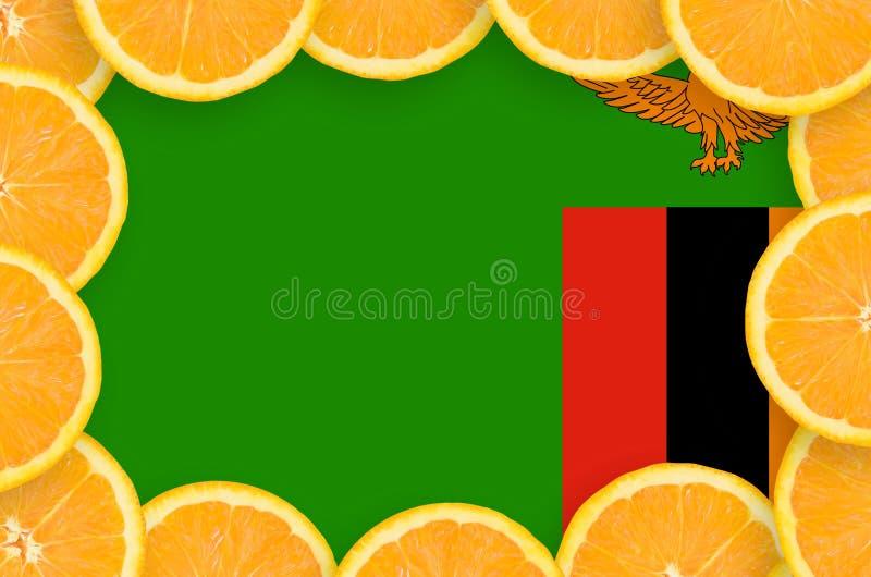 Флаг Замбии в свежей рамке кусков цитрусовых фруктов бесплатная иллюстрация