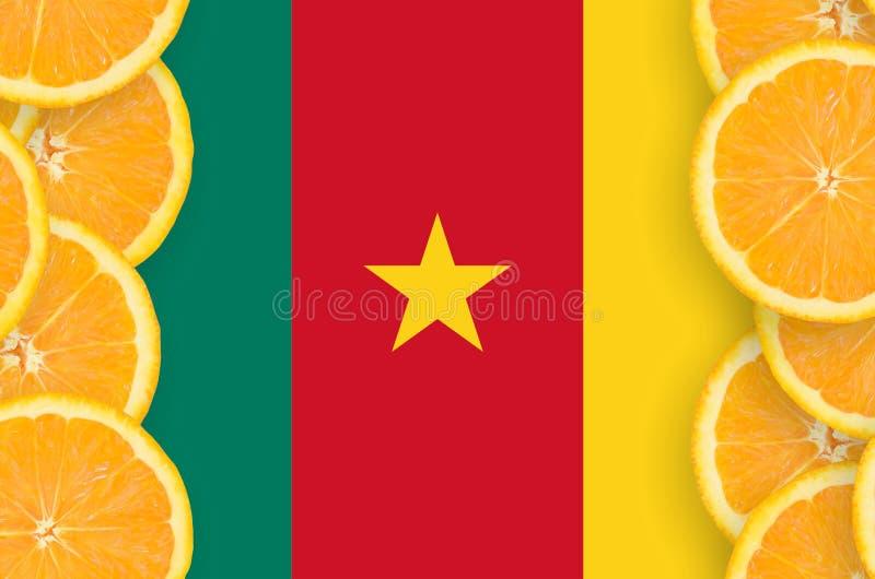 Флаг Камеруна в рамке кусков цитрусовых фруктов вертикальной стоковые изображения rf