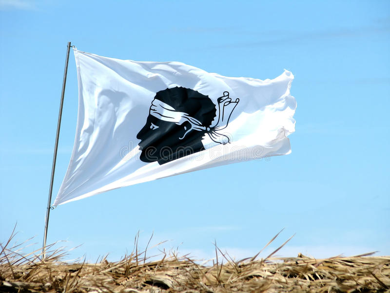 флаг Корсики стоковая фотография rf