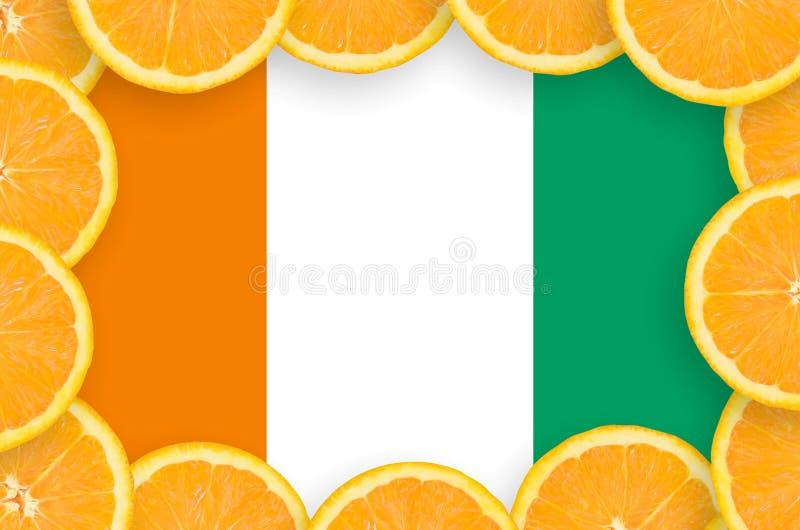 Флаг Кот-д'Ивуар в свежей рамке кусков цитрусовых фруктов иллюстрация штока