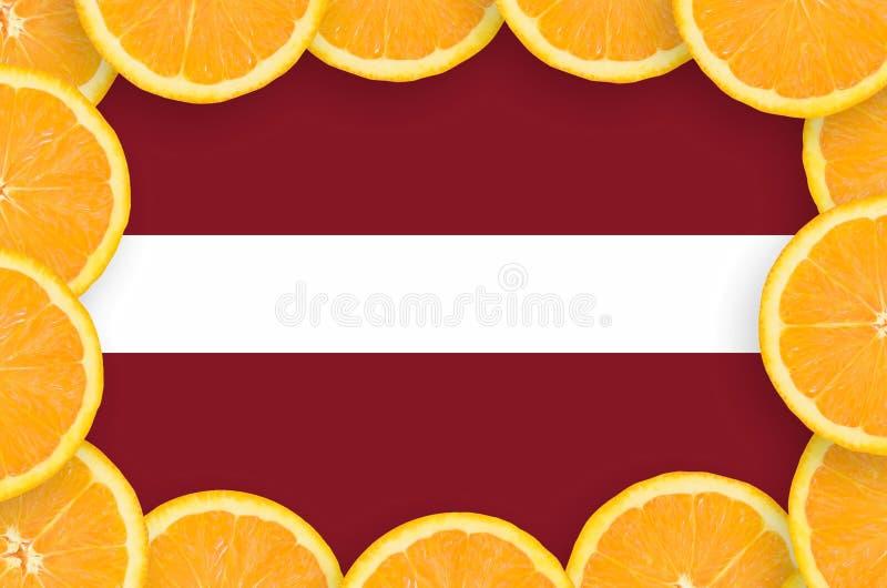 Флаг Латвии в свежей рамке кусков цитрусовых фруктов иллюстрация вектора
