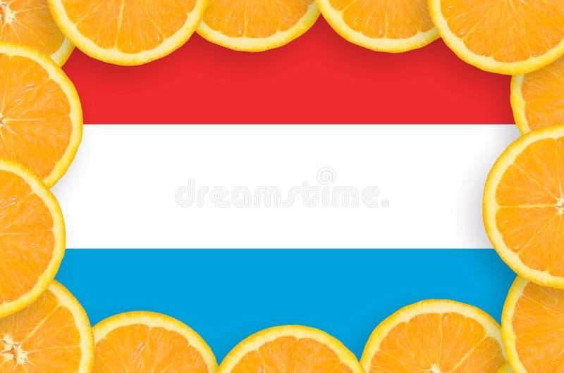 Флаг Люксембурга в свежей рамке кусков цитрусовых фруктов иллюстрация вектора