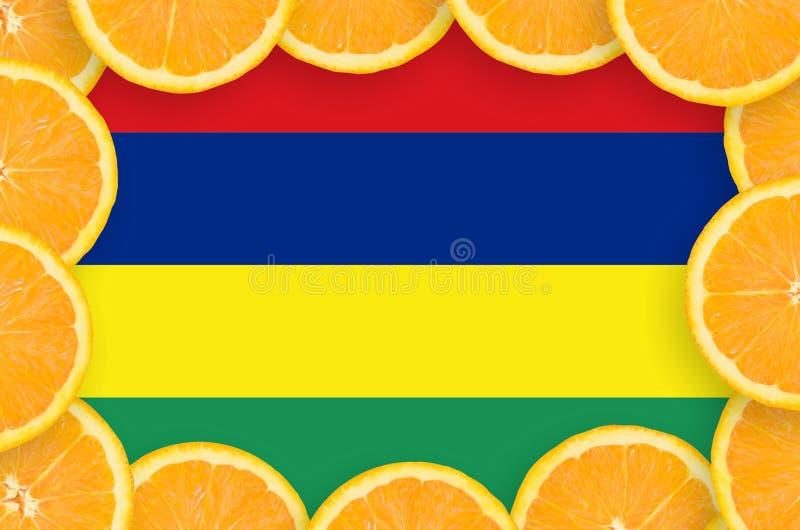 Флаг Маврикия в свежей рамке кусков цитрусовых фруктов иллюстрация штока