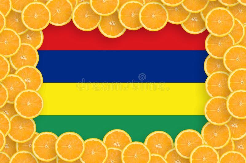 Флаг Маврикия в свежей рамке кусков цитрусовых фруктов бесплатная иллюстрация