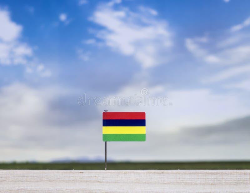 Флаг Маврикия с обширным лугом и голубым небом за им стоковая фотография rf