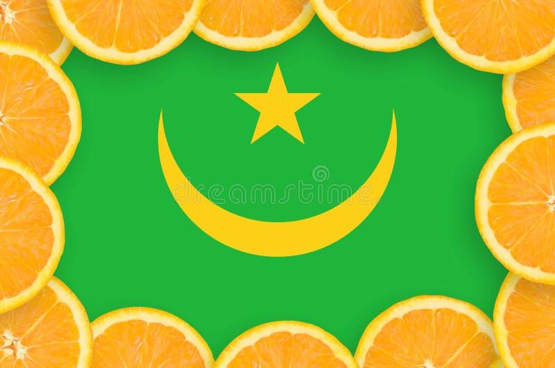 Флаг Мавритании в свежей рамке кусков цитрусовых фруктов иллюстрация штока