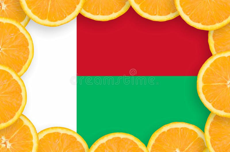 Флаг Мадагаскара в свежей рамке кусков цитрусовых фруктов бесплатная иллюстрация