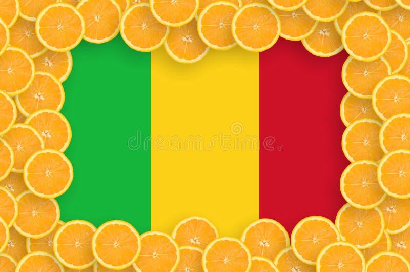 Флаг Мали в свежей рамке кусков цитрусовых фруктов бесплатная иллюстрация