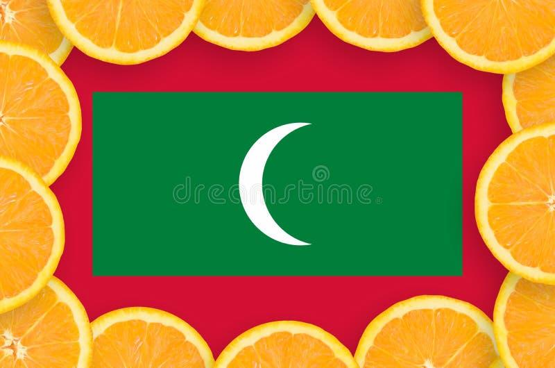 Флаг Мальдивов в свежей рамке кусков цитрусовых фруктов иллюстрация вектора