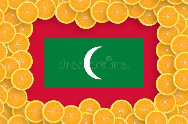 Флаг Мальдивов в свежей рамке кусков цитрусовых фруктов иллюстрация штока