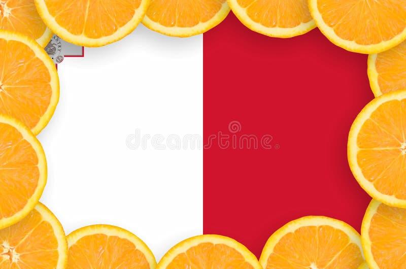 Флаг Мальты в свежей рамке кусков цитрусовых фруктов иллюстрация штока
