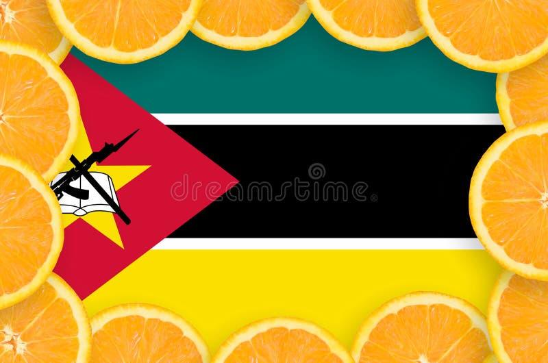 Флаг Мозамбика в свежей рамке кусков цитрусовых фруктов бесплатная иллюстрация