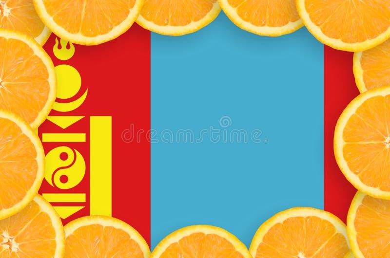 Флаг Монголии в свежей рамке кусков цитрусовых фруктов иллюстрация вектора