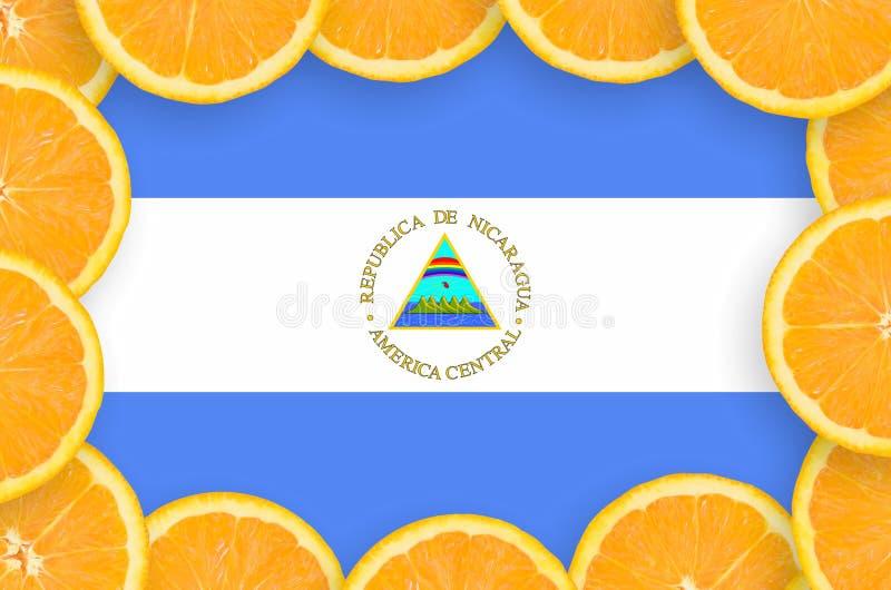 Флаг Никарагуа в свежей рамке кусков цитрусовых фруктов иллюстрация вектора