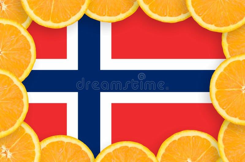 Флаг Норвегии в свежей рамке кусков цитрусовых фруктов иллюстрация штока