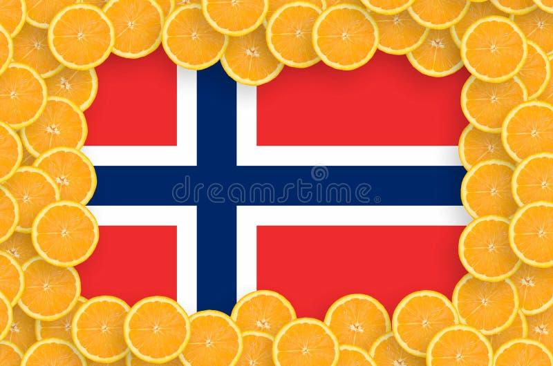 Флаг Норвегии в свежей рамке кусков цитрусовых фруктов бесплатная иллюстрация