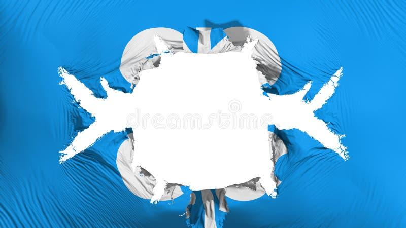 Флаг ОПЕК с большим отверстием иллюстрация штока