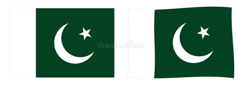флаг Пакистан Простая и немножко развевая версия иллюстрация вектора