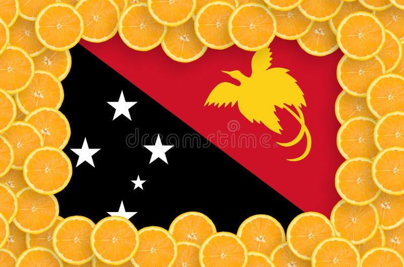 Флаг Папуаой-Нов Гвинеи в свежей рамке кусков цитрусовых фруктов бесплатная иллюстрация